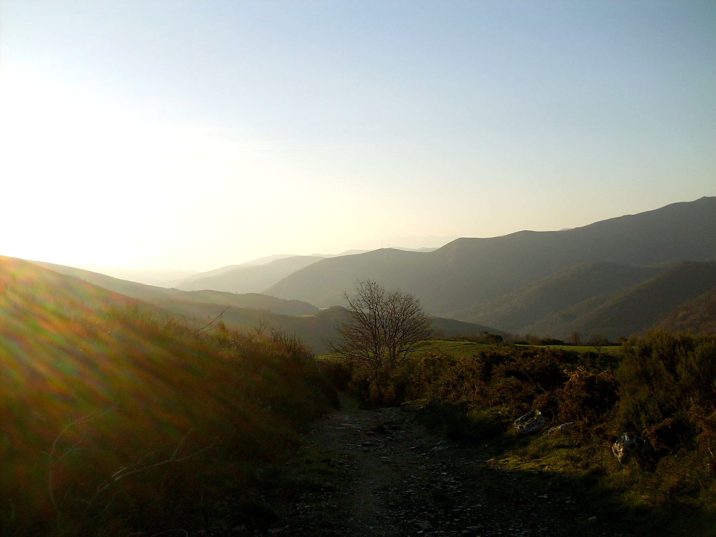 Sonnenaufgang in Galizien.